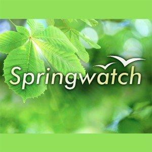 Springwatch Logo